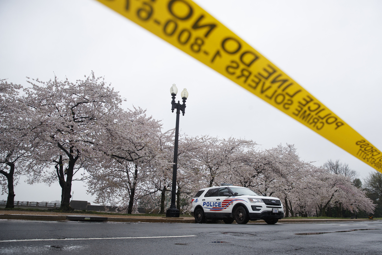 FILE – In this March 23, 2020, file photo a Washington, D.C. Metropolitan Police vehicle is parked on the other side of a tape police line along the Tidal Basin as cherry blossoms cover the trees, in Washington. The nation's capital, like most of the nation itself, is largely shuttered. (AP Photo/Carolyn Kaster, File)