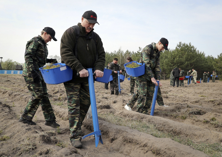Belarus President Alexander Lukashenko, foreground, plants young trees during a subbotnik, a Soviet-style Clean-up Day, in the village of Liaskovichi, about 270 km (169 miles) south of Minsk, Belarus, Saturday, April 25, 2020. Hundreds of thousands of state employees attend a mass community clean-up event on Saturday. The World Health Organization is urging the government of Belarus to cancel public events and implement measures to ensure physical and social distancing amid the growing coronavirus outbreak. (Maxim Guchek/BelTA Pool Photo via AP)
