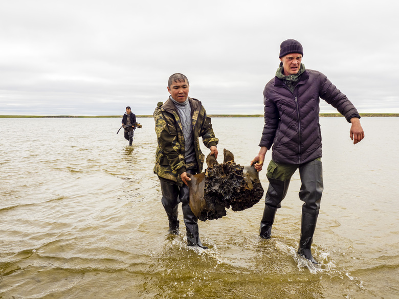 In this handout released by Governor of Yamalo-Nenets region Press Office, people carry a mammoth bone fragment in the Pechevalavato Lake in the Yamalo-Nenets region, Russia, Wednesday, July 22, 2020. Fragments of a mammoth skeleton have been found by local reindeer herders in the lake a few days ago, and scientists hope to retrieve the entire skeleton – a rare find that could help deepen the knowledge about mammoths that have died out around 10,000 years ago. (Artem Cheremisov/Governor of Yamalo-Nenets region of Russia Press Office via AP)