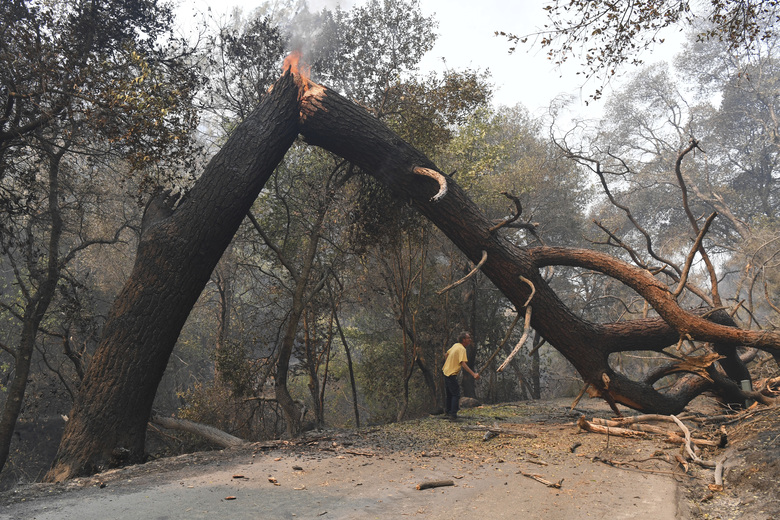 A man tries to break off a branch on a tree that is blocking his way while attempting to go home after a fire ravaged the area on Mix Canyon Road in Vacaville, Calif., on Thursday, Aug. 20, 2020. The man did not want to be identified but stated he lived just a few hundred feet past the tree. The LNU Lightning Complex fires began in Napa and Sonoma counties and have traveled into Solano, Lake and Yolo counties while burning more than 200 square miles. (Jose Carlos Fajardo/Bay Area News Group via AP)