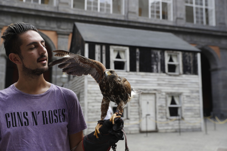 Lucio Ferrara, who works in bird control for the municipality in Piazza del Plebiscito, holds his eagle named, Iena, as he walks in the yard of the Royal palace where the house of U.S. civil rights campaigner Rosa Parks was rebuilt for public display by artist Ryan Mendoza, in Naples, Italy, Tuesday, Sept. 15, 2020. The rundown, paint-chipped Detroit house where Parks took refuge after her famous bus boycott is going on display in a setting that couldn't be more incongruous: the imposing central courtyard of the 18th century Royal Palace. (AP Photo/Gregorio Borgia)