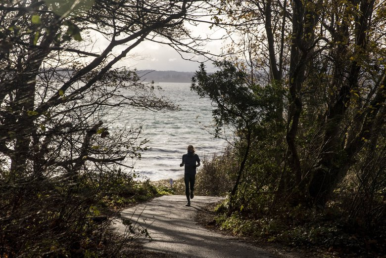 A man runs during a windy day at Discovery Park recently. (Amanda Snyder / The Seattle Times)
