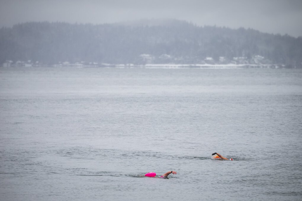 Swimmers use floats for visibility while in the open waters of Puget Sound at Alki Beach in West Seattle Feb. 14, 2021. (Bettina Hansen / The Seattle Times)