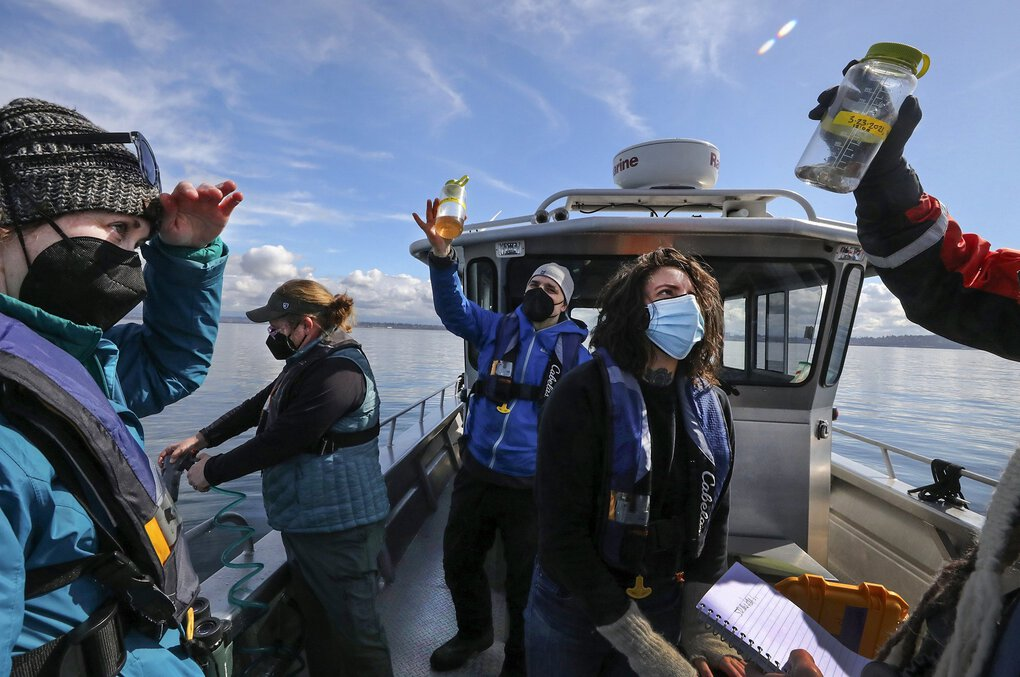Jennifer Olson, left, Josh Searle (in blue, center) and Katherine Dye check water samples collected as Ardi Kveven, at the rail, cleans equipment on Possession Sound. (Alan Berner / The Seattle Times)
