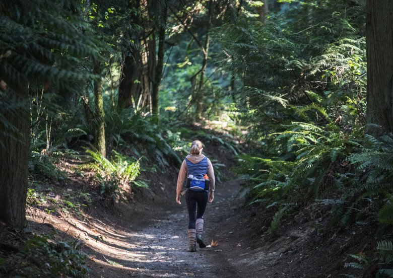 A hiker sets off on the Coyote Trail at Bridle Trails State Park in Kirkland.  (Steve Ringman / The Seattle Times, 2020)